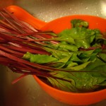 Cooking with Vegetable Leaves