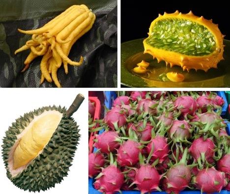 exotic-bizarre-fruit